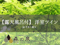 【露天風呂付】洋室ツイン(38平米+露天)