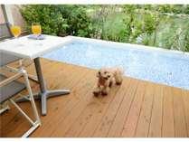 【ソフトオープン記念】プライベートドッグプールで愛犬と過ごす一泊朝食プラン