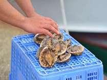 恵まれた漁場でその日に獲れる鮮魚の中でももっとも良い食材を使います♪