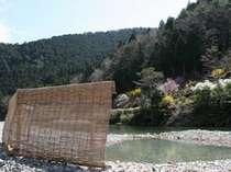 河原の露天風呂(3月から11月)雨による増水時入浴できない場合あり