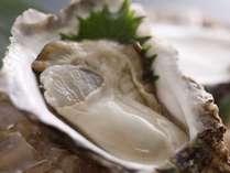 ぷっくり『夏牡蠣』
