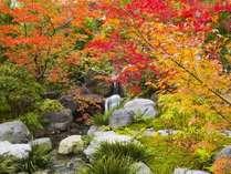 *当館の庭園で紅葉狩り♪