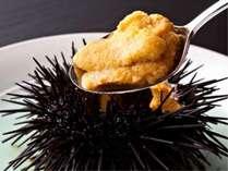 三陸産の天然『キタムラサキウニ』。磯の香りが高く濃厚な甘味が口の中に広がります。