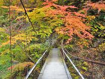 紅葉狩りへ行こう♪紅葉露天と山形旬の味覚[芋煮]を楽しむ<秋プラン