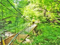 *最上川の自然がつくりだすマイナスイオンを浴びて道中の疲れをリフレッシュ。