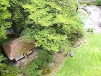 初夏の日本庭園。