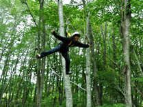 ★★ジップラインアドベンチャー★★ まるでターザン!?木々の間を駆け抜けるスリルを味わおう♪