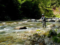 【渓流釣り◆1泊夕食】岩魚の里 渓流釣りプラン《日釣り券付》