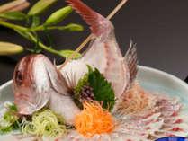 祝★じゃらんアワード2017受賞!特別料理1品付き<鯛の姿造り>ロープウェイとクルーズで浜名湖満喫♪