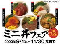 ≪9~11月限定≫食欲の秋!【ミニ丼フェア】創作和食膳プラン