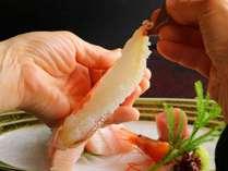 【食べ比べ】活松葉がに1.0杯+特選ズワイガニ1.0杯|地蟹コース<学び>