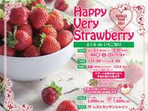 【ホテルdeいちご狩り】2月1日~3月31日まで毎週末金・土・日に行います!デザートはイチゴの食べ比べ♪