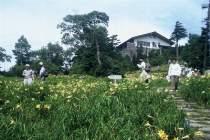 7月の東館山高山植物園
