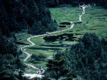 志賀高原トレッキング代表コースの四十八池(しじゅうはちいけ)