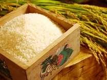 自家農園の米「あきたこまち」