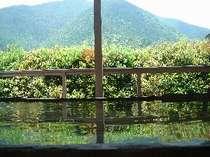 露天風呂から眺める奥吉野の景色