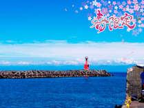 【春の得旅】 平日限定◆最大5,000円引き≪基本≫定番人気♪ 地魚お造り&サザエつぼ焼き おまかせコース