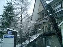 パウダースノーへ歩いて1分!車山スキー場リフト割引券つき素泊まりプラン