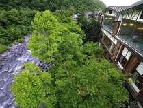 奥入瀬渓流の河畔に建つ当ホテルから眺める景色は最高のロケーションです