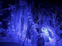 【冬の4大特典付】1泊食事なし~時間を気にせず青森観光を満喫~