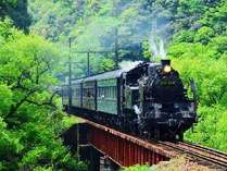 大井川鉄道のSL。乗車も撮影も楽しめます。