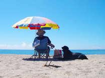 根本海岸が目の前♪青い海と空に心癒されます