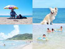 目の前には綺麗な砂浜があり、7月下旬から8月下旬までは根本海水浴場として開放されます♪