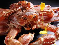 福井の冬の味覚王「越前蟹」全5プラン登場!アツアツ甘~い自釜茹で越前蟹をご堪能下さい!