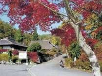 BBQプラン ポイントアップキャンペーン 紅葉の美しいふるさと村 生ビール一杯無料 住宅タイプ6人用