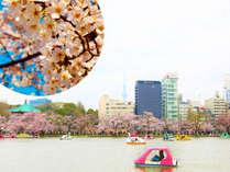 上野公園の桜とホテルの外観