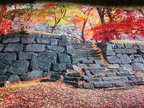 盛岡城跡公園紅葉