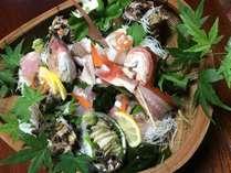◆丹後半島夏を満喫!!丹後の魚は旨い!◆地元魚介料理・海鮮船盛とミニステーキにさざえごはん付プラン!