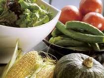 【朝食一例】朝食で大好評の、新鮮朝取り野菜。ご朝食にはミネラル栽培の野菜を。