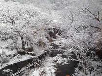 雪化粧した湯川