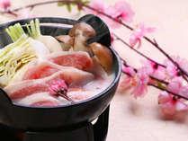【春限定★雅コース】スタンダード会席!ほんのり春風味◆桜塩でいただく知多豚の豆乳鍋♪
