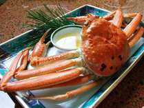 松葉ガニ浜茹で(姿蒸し)◆蟹三昧プラン◆蟹横綱フルコースプラン に付きます:例