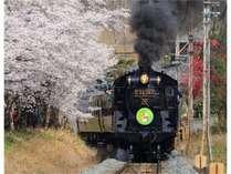 秩父鉄道を駆け抜ける、存在感バッチリのSL列車