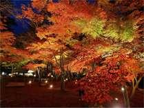秋 11月長瀞は紅葉に染まる