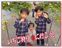 イチゴ狩りにいこう!子供から大人まで楽しめる。