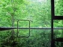【風呂】緑鮮やかな景色を眺めながら 朝風呂