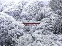 【景観】白銀の山々に赤が映える高井橋