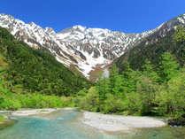 **【上高地】爽やかな緑と、梓川を流れる澄んだ蒼い水がすがすがしく、上高地らしさを感じられます。