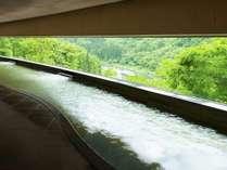 渓流展望風呂からの新緑