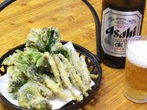 *【食事/夕食一例】山菜の天ぷらはビールに良く合います。