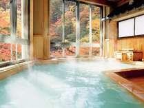 紅葉とにごり湯檜風呂
