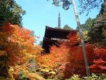 滋賀の紅葉旅・紅葉の名所◆湖東三山を巡る♪≪クレコプラン≫