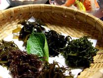 海藻を酒粕入りの出汁でしゃぶしゃぶ。「海藻ってこんなに美味しかったんだ~!」という嬉しいお声も♪