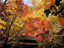 秋の風景 黒川荘外観