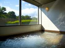 TOTO自慢の自然光が差し込む大浴場でゆったりと♪