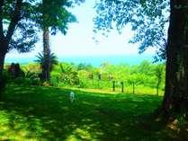 海の見える芝生のドックラン。ペットと一緒に穏やかな時間を・・・